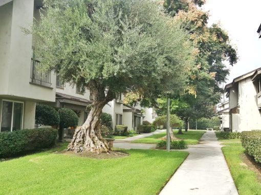 9731 Karmont Avenue, South Gate CA | 2 BED | 3 BATH | 2 CAR GARAGE